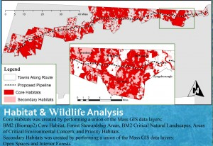Habitat & Wildlife Analysis